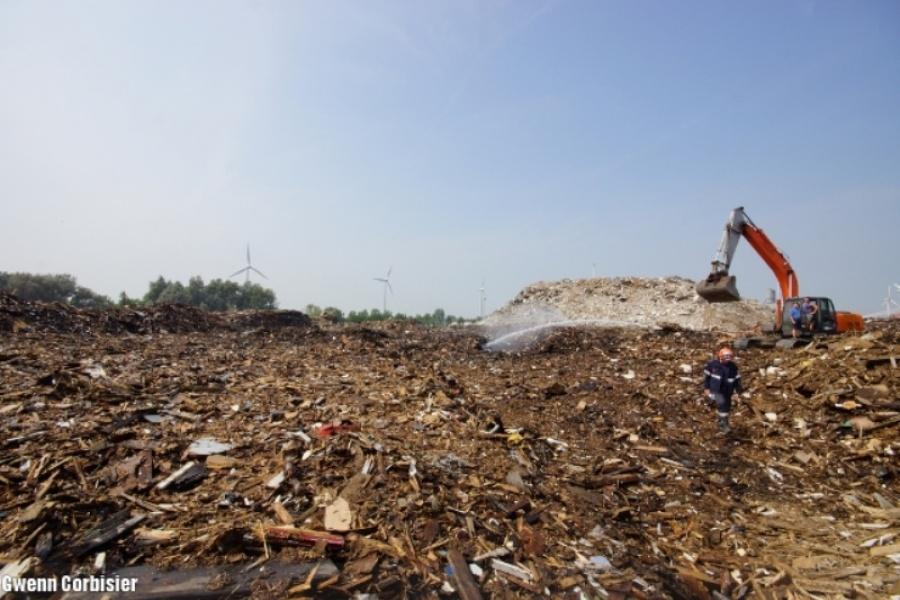 Het houtafval worden verplaatst met behulp van kranen